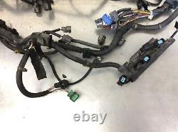 96-98 Civic EX AT Wire Harness Engine Wiring Loom Cables Plugs Sub Cord OEM