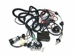 CF250 GY6 250cc kandi kinroad buggy complete wiring loom harness components