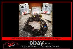 DTA S60 Engine Harness To Suit A Ford ST170 Engine Motorsport Engine Loom