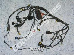 Ducati 996R 998 998S 998R Main Electrical Wiring Harness Loom ECU CDI