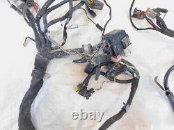 2004-2007 Buell Firebolt Xb Xb9 Xb9r & Xb12 Xb12r Cordon De Câblage Principal
