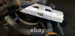 Nissan Patrol Tb45 Moteur Loom Wiring Harness Gu/gu II 12/97-04/17, Jamais Sur Le Gaz